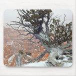 Rim Bryce Canyon Mouse Pad