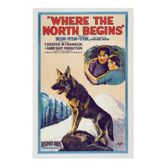 Rin Tin Tin - Where The North Begins Poster