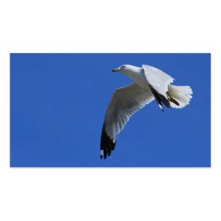 Ring-Billed Gull in Flight Business Card