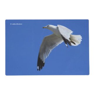 Ring-Billed Gull in Flight Placemat