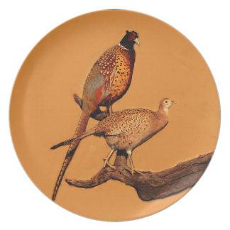 Ring-neck Pheasant Dinner Plate