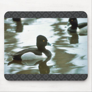 Ring Necked Ducked Mouse Pad