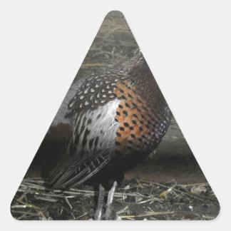 Ring-Necked Pheasant Bird Triangle Sticker