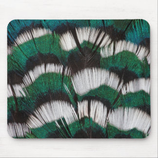Ring-Necked Pheasant Feathers Mouse Pad