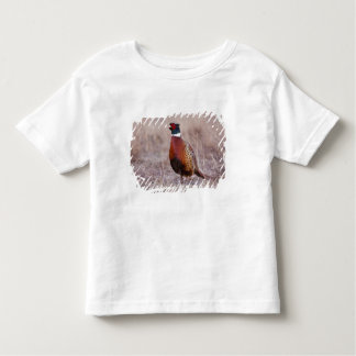 Ring-necked Pheasant Phasianus colchicus) Toddler T-shirt