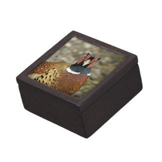 Ring Necked Pheasant Premium Trinket Box