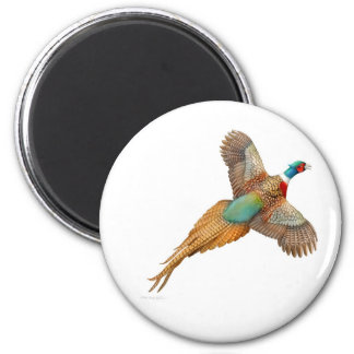 Ring Necked Pheasant Round Magnet