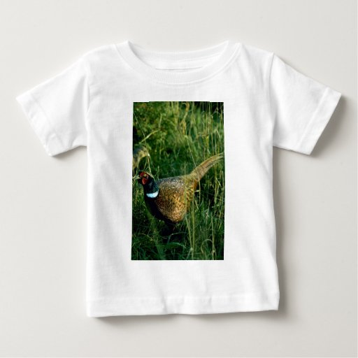Ring-necked pheasant t shirts