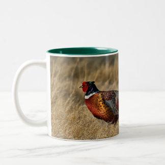 Ring-necked Pheasant Two-Tone Coffee Mug