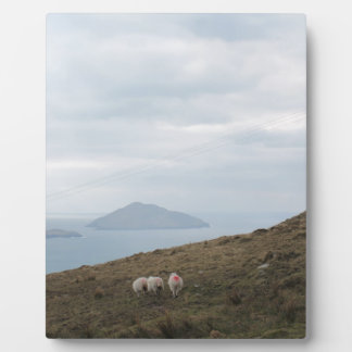 Ring of Kerry, Ireland Plaques