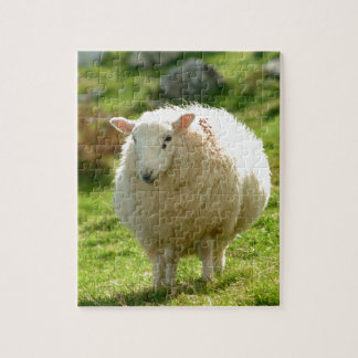Ring of Kerry Sheep Jigsaw Puzzle