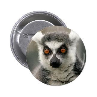 ring tail lemur pinback button