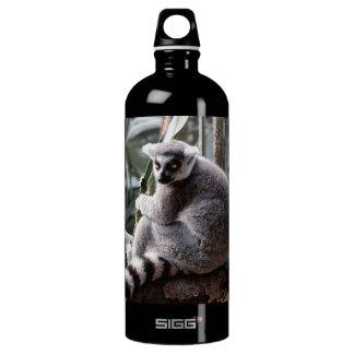 Ring Tail Lemur Wildlife Animal Photo Aluminum Water Bottle