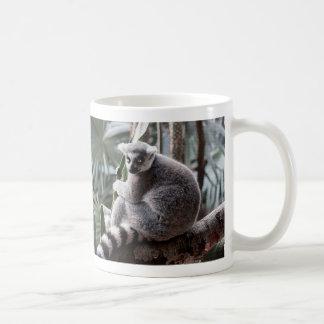 Ring Tail Lemur Wildlife Animal Photo Coffee Mug