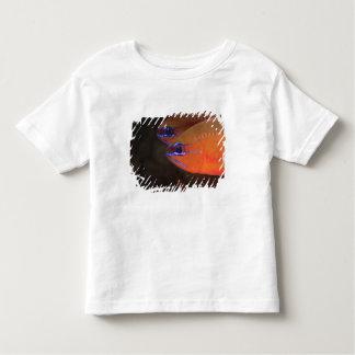 Ring-tailed Cardinalfish Apogon aureus) Milne Toddler T-shirt