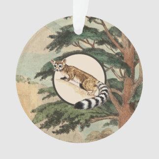 Ring-Tailed Cat In Natural Habitat Illustration