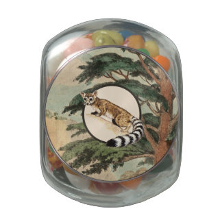 Ring-Tailed Cat In Natural Habitat Illustration Glass Candy Jars