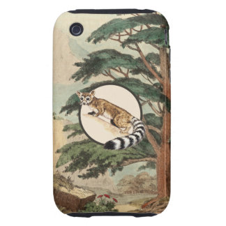 Ring-Tailed Cat In Natural Habitat Illustration iPhone 3 Tough Covers