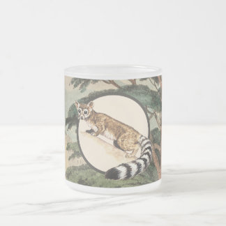 Ring-Tailed Cat In Natural Habitat Illustration Frosted Glass Coffee Mug