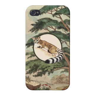 Ring-Tailed Cat In Natural Habitat Illustration Covers For iPhone 4