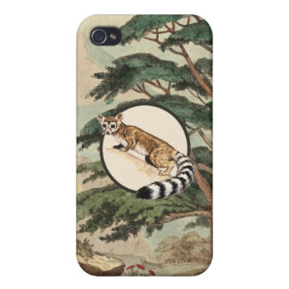Ring-Tailed Cat In Natural Habitat Illustration Case For iPhone 4