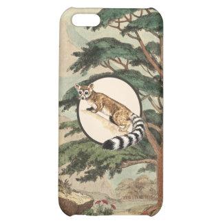 Ring-Tailed Cat In Natural Habitat Illustration iPhone 5C Case