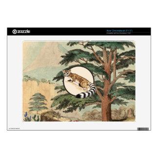 Ring-Tailed Cat In Natural Habitat Illustration Acer Chromebook Skins