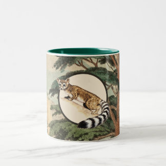 Ring-Tailed Cat In Natural Habitat Illustration Two-Tone Coffee Mug