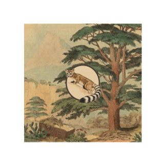 Ring-Tailed Cat In Natural Habitat Illustration Wood Wall Decor
