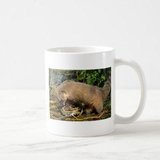 Ring-tailed Coati attacking a turtle Coffee Mug