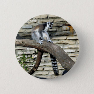 Ring-tailed Lemur Button