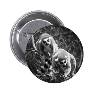 Ring Tailed Lemur Button Badge