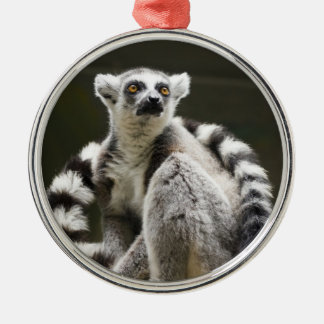Ring-tailed Lemur Christmas Ornaments
