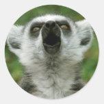 Ring-Tailed Lemur Classic Round Sticker