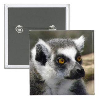 Ring-Tailed Lemur Close Up Portrait Pinback Button