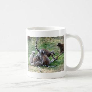 Ring tailed lemur family mugs