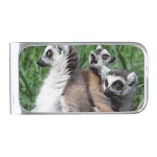 Ring-tailed Lemur Family Silver Finish Money Clip