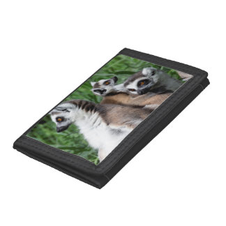 Ring-tailed Lemur Family Trifold Wallet