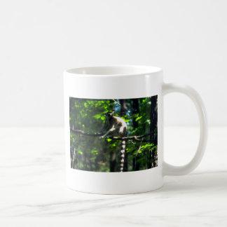 Ring-Tailed Lemur in tree Coffee Mugs