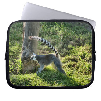 Ring Tailed Lemur Laptop Sleeves