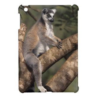 Ring-Tailed Lemur (Lemur Catta), Berenty iPad Mini Case