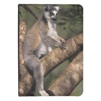 Ring-Tailed Lemur (Lemur Catta), Berenty Kindle 4 Case