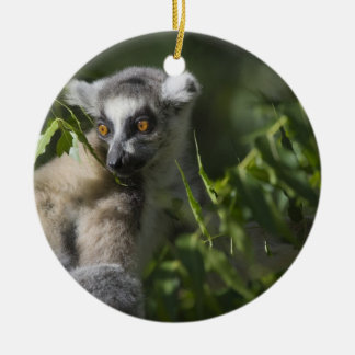 Ring tailed lemur (Lemur catta), Madagascar Double-Sided Ceramic Round Christmas Ornament
