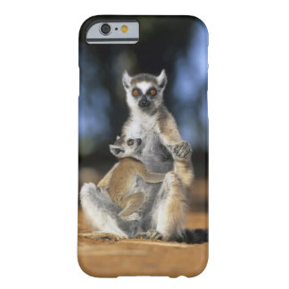 Ring-tailed Lemur Lemur catta Mother and iPhone 6 Case