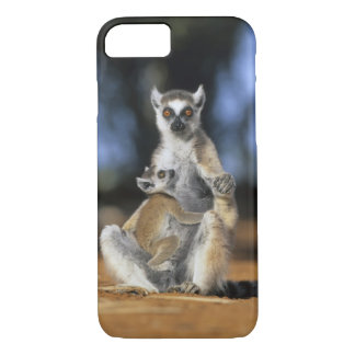 Ring-tailed Lemur, (Lemur catta), Mother and iPhone 8/7 Case