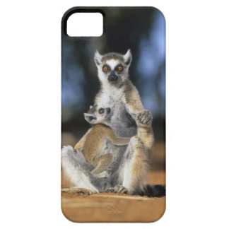 Ring-tailed Lemur, (Lemur catta), Mother and iPhone SE/5/5s Case