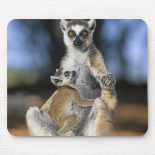 Ring-tailed Lemur, (Lemur catta), Mother and Mouse Pad