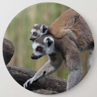 Ring-Tailed Lemur Mother And Baby Button