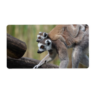 Ring-Tailed Lemur Mother And Baby Label
