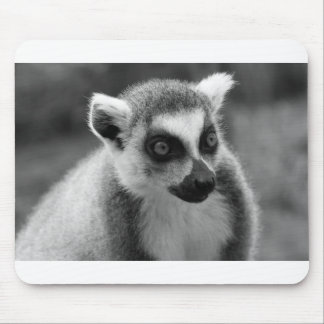 Ring-tailed Lemur Mousepad Black and White